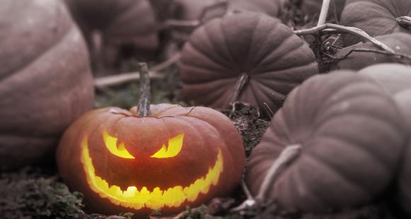 Halloween Horrors and Wishlists