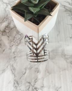 chrry diva banle cactus